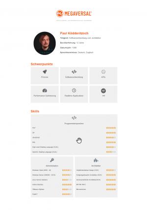 Profil-Paul-Ködderitzsch-Softwareentwickler-MEGAVERSAL